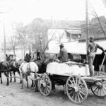 Four mules pulling a cart with a large block of granite.