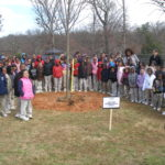 Dozens of school children around a newly planted tree