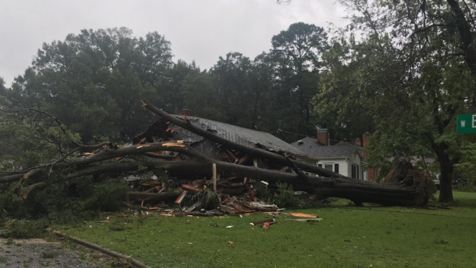 Home crushed by a large fallen tree