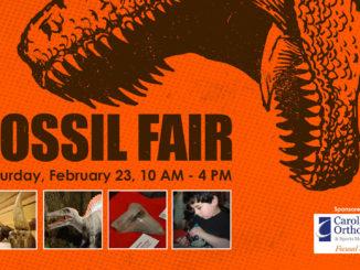 Fossil Fair at the Schiele