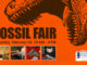 Fossil Fair at the Schiele