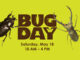 Two insects around the words Bug Day