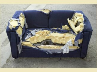 Old sofa with badly torn upholstery
