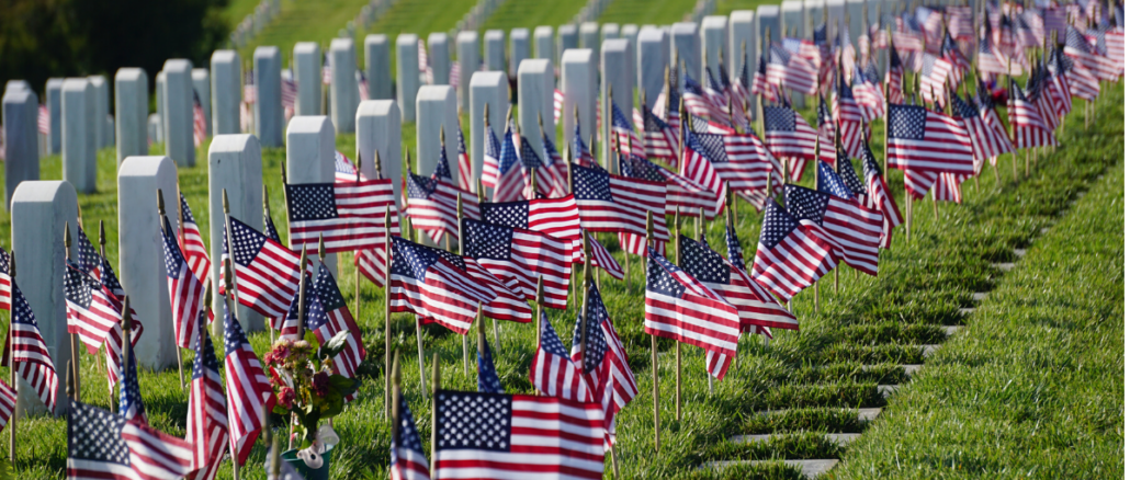 American flags in rows in cemetery