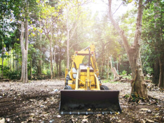 Bulldozer in wooded area