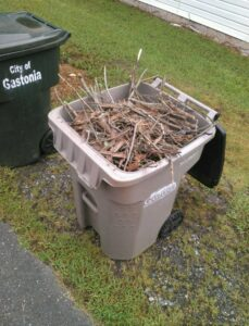 Recycling bin filled with sticks and leaves