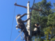 Two men high on a pole connecting electric lines