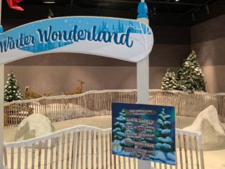 Winter Wonderland sign above skating rink entrance
