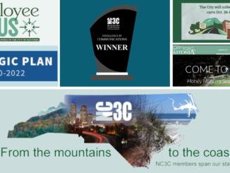 NC3C awards - art collage